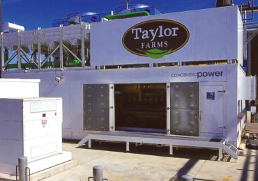 TechCrunch – Taylor Farms wants to make food without fossil fuels